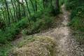 Sentier qui part à gauche après la Madone