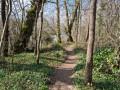 Sentier en bord d'Ariège
