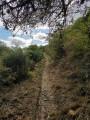 Sentier en bordure de clôture