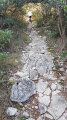 Sentier en dalle rocheuse