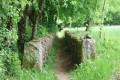 Sentier entre deux murets de pierres (au retour)