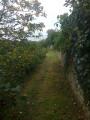 """sentier entre murs de pierres sèches et hauteur sur la vallée arborée de """"La Belle""""."""