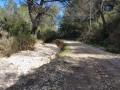 sentier et lit du ruisseau