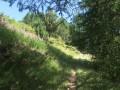 Sentier fleuri