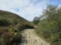 Sentier le long du ruisseau