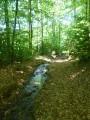 Sentier ou ruisseau?