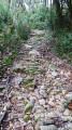 Brousses - Sur la trace des anciens chemins