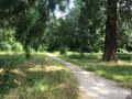 Sentier vers l'étang de Taffarette