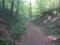 sentier vers Stainville