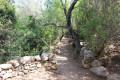 Sentier du patrimoine : Les Orii à Monaccia-d'Aullène