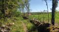 Les environs d'Escamps : iris et truffières