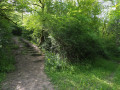 Sentier du Patrimoine de Puycelsi