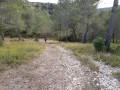 Gaudre du Rougadou et Chemin des Lombards
