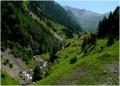 Sortie de forêt et arrivée en vallée haute