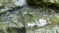 Source de l'Ecuelle