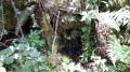Route des Fontaines depuis le parking de la Coche à Saint-Agnan-en-Vercors
