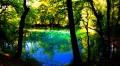 Source haute en couleurs l'été