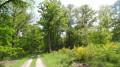 Entre forêts et étangs autour de la Ferté-Saint-Cyr