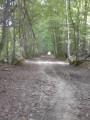 D'Avenay-Val-d'Or à Rilly-la-Montagne par la via campaniensis