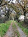 Les Cinq Routes, aux portes d'Angers