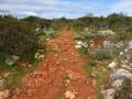Sur le chemin vers le Miradouro Norte