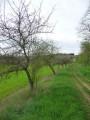 Circuit du maquis Bourgogne autour des Bordes