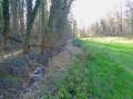 Talweg du Lutterbach