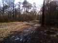 Terrain boueux