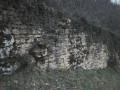 Torcieu Chemin de la Rochette