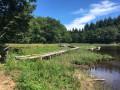 Lac de Laprade par les tourbières