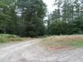 Le Bois de Chaleix à Bugeat