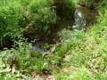 Traversée d'un ruisseau sur le GR78.