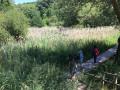 Traversée de l'étang de la Petite Barrerie