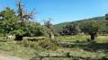 Les Menhirs du Plateau Lambert depuis la Croix d'Anselme