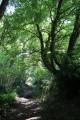 Sur les pas de la Vauvre du côté d'Aigurande