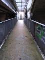 Tunnel entre route et voie ferrée.
