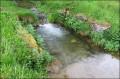 Un bassin du vallon de la Creuse