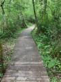 Un chemin de planche