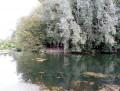 un coin de nature