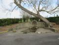 Fontaines et lavoirs de Gargenville