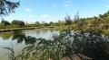 Un étang près du lieu-dit du Verger