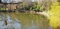 Un étang proche de l'ENFER