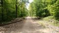 Un large chemin