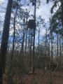 Un poste de chasse
