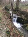 Un ruisseau bien plein