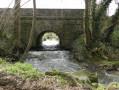Un ruisseau tumultueux