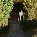 Un sentier discret