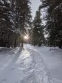 Un soleil timide indique le chemin