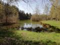 Un tout petit étang