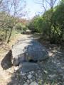 Une bien étrange pierre au milieu du chemin